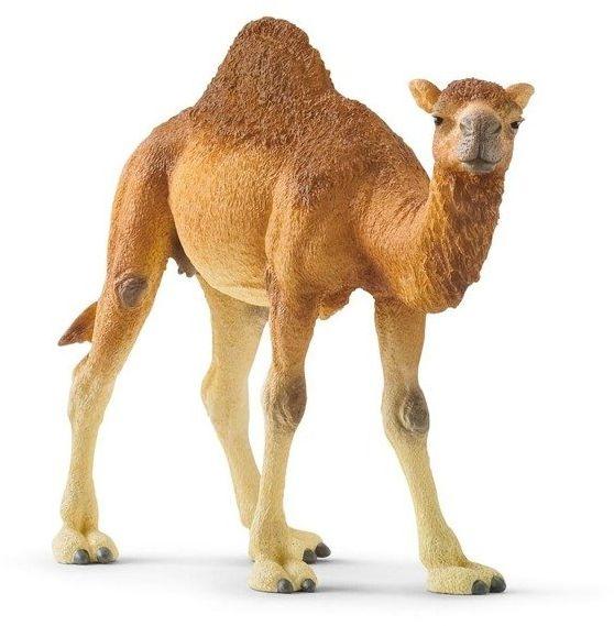 Wielbłąd Dromader - SCHLEICH