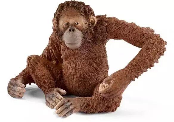 Orangutan samica - SCHLEICH