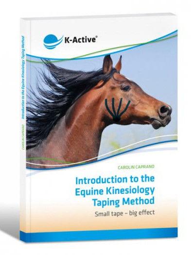 Wprowadzenie do metody Tapingu Kinezjologii dla koni - Carolin Caprano