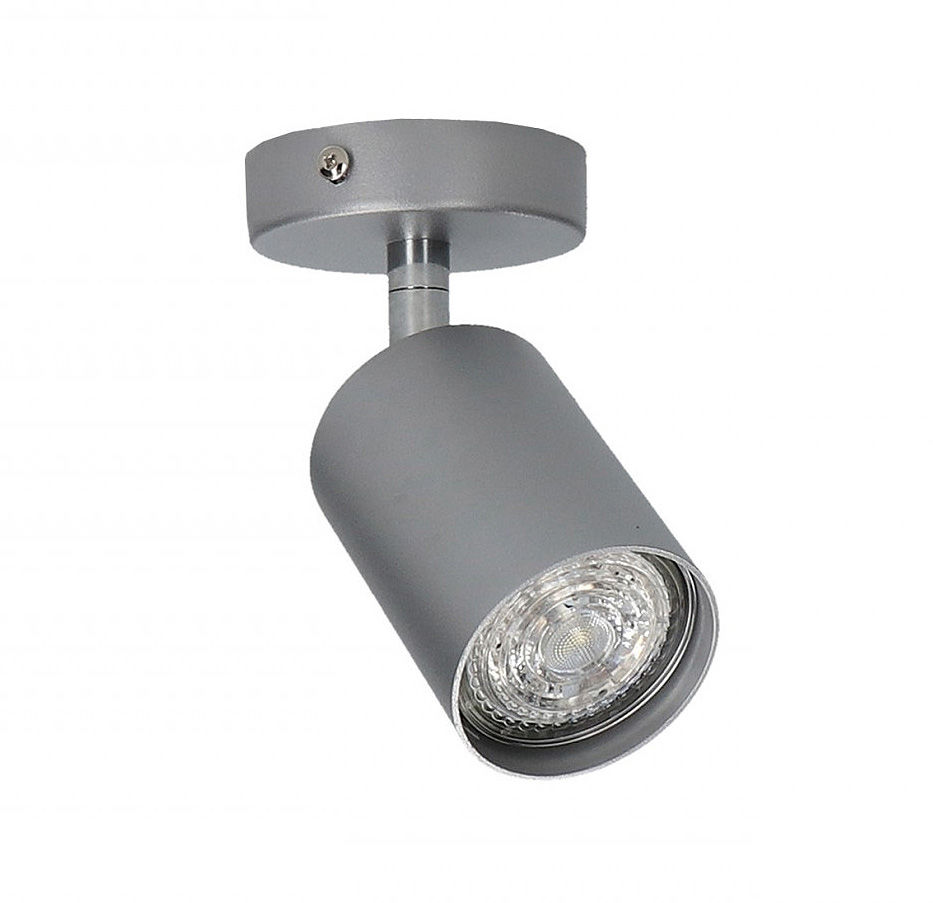 Reflektor Eye Spot 6138 Nowodvorski Lighting uniwersalna oprawa w kolorze srebrnym