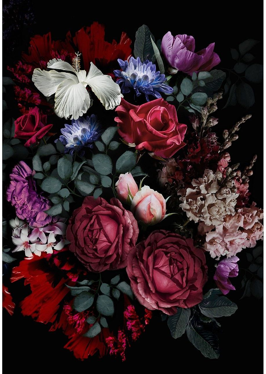 Obraz na płótnie Flowers II, 50 x 70 cm